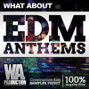 EDM Anthems [10 Construction Kits, 400+ Samples, Loops & Massive, Sylenth1, Spire Presets]