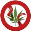En Un Gobierno Suyo Promoverá La Despenalización Del Consumo De Mariguana