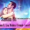 Sanam Re -DJ Mithun ft. Lisa Mishra
