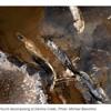 Delvin Creek environmental EEL  Mystery interview on 2UE