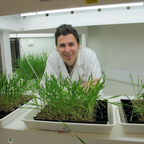 Fungicide Resistance in WA