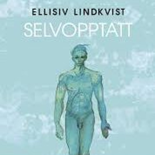 Ellisiv Lindkvist, Marianne Håheim og kvinnedagsmarkering på Youngstorget