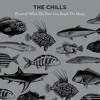 The Chills - Pyramid/When The Poor Can Reach The Moon