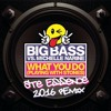 Big Bass - What ya do (Ste Essence 2016 remix)FREE DOWNLOAD