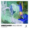 Spiritchaser - Wild Orchid Ft Angie Brown - Main Mix