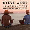 Steve Aoki & Headhunterz - Feel (The Power of Now)