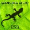 Konnichiwa Gecko (Gustav Krantz Mashup)