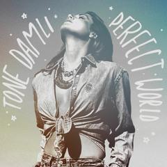Tone Damli - Perfect World (Remix)