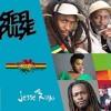 Pure Grenada Music Festival Reggae Night