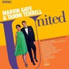 Marvin Gaye & Tammi Terrell - 04 - Something Stupid