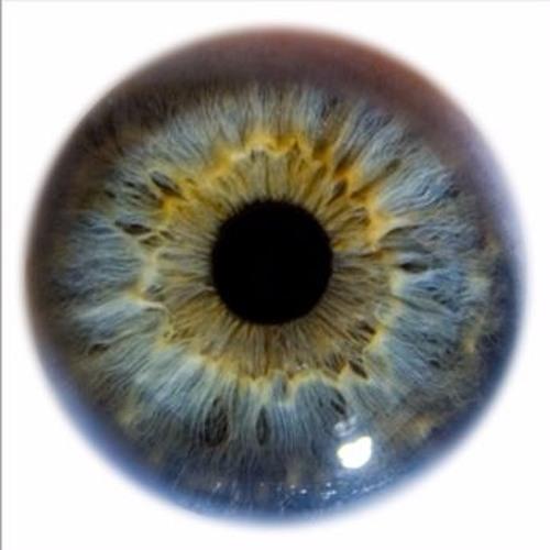 vital iris