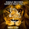 JUNGLE Records Sample Pack VOL. 1 [2000 Downloads! Buy x Free]