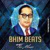 Bhimrao Ek Number - DJ Rush & Alex V
