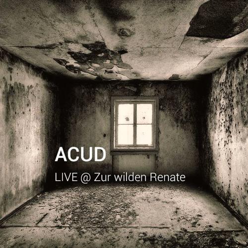 ACUD [at] Zur wilden Renate Berlin (04.03.2016)