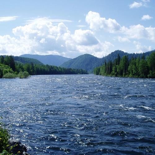 The River by Coco Love Alcorn