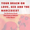 Your Brain On Love, Sex And The Narcissist- Why Do Victims Stay So Long In Abusive Relationships-
