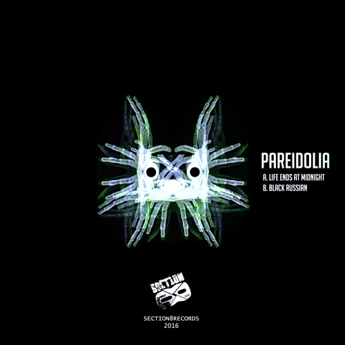 Pareidolia - Life Ends at Midnight [SECTION8089D]