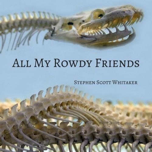 All My Rowdy Friends