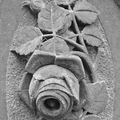 stone rose manu