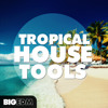 Tropical House Tools [5 Construction Kits, 150+ Melodies, Drums, Guitar Loops] #2 Beatport TOP 10!