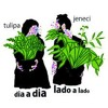 Tulipa Ruiz e Marcelo Jeneci -