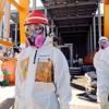 Fukushima Five Years On / German Elections/ The True Identity of Elena Ferrante