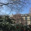 Chant des oiseaux dans le 9e arrondissement de Paris