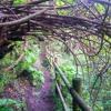 5 Gran Canarian Treasures Off The Beaten Path