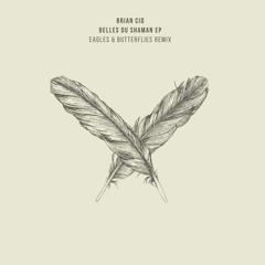 Brian Cid - Belles Du Shaman (Original Mix) [microCastle] (Preview)