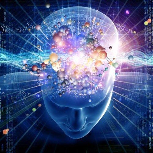 Brain Explorer. A Crazy Journey Through Research