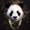 Panda (D$GNR Remix) *Click Buy 4 Free Download*