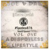 Joe Dak & Spotless876Sound - PRESENTS - A Di Spotless LifeStyle - Mixtape 2016 - Raw