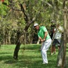 Padraig Harrington (-1) - Hero Indian Open day 1