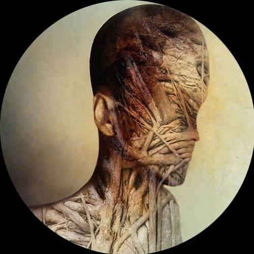 Ricardo Garduno - Signs (NX1 Remix)