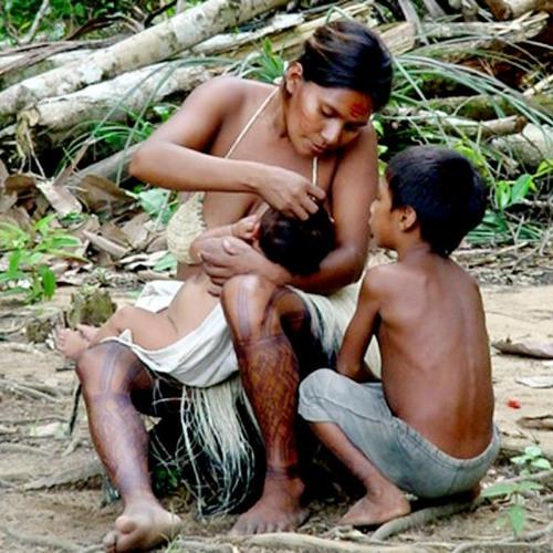 Coletiva da relatora especial da ONU sobre povos indígenas no Brasil (2016)
