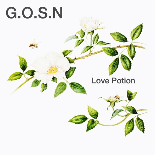 Ghosts of Social Networks - Love Potion