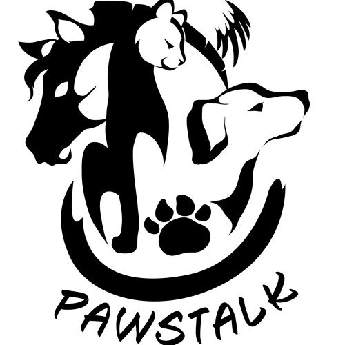 Pawstalk Podcast #02 - Animal Energy Healing & Volunteering