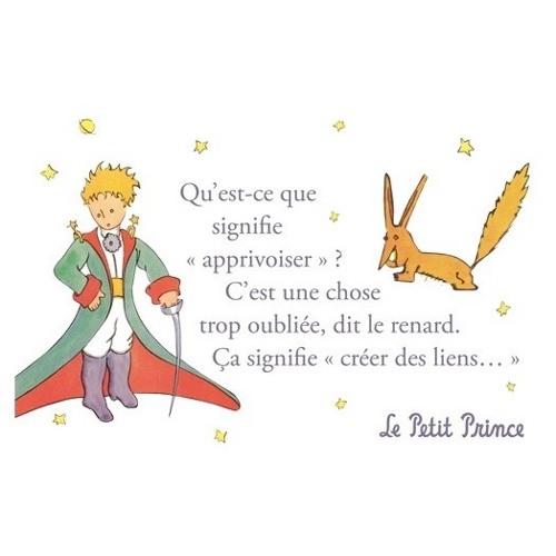Narration - Français. Le petit Prince.