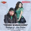 Tresno Waranggono - Nurbayan ft. Lilin Herlina