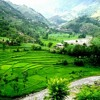 Da yadoono Samandar Best pashto Ghazal By Ahmad gul.mp3