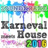Karneval meets House 2016