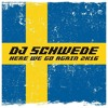 DJ Schwede - Here We Go Agian (Marq Aurel & Rayman Rave Remix)