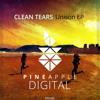 Clean Tears - Unison (Original Mix) Snippet [Pineapple Digital]