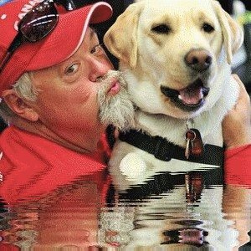 Paws Fur Thought - The Fight for PTSD Service Dogs - Radio Room