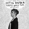 JUSTIN BIEBER PURPOSE WORLD TOUR CONCERT PROMO
