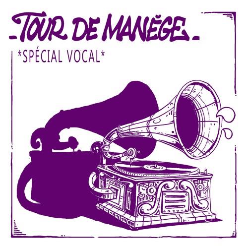 Tour De Manège - Spécial Vocal - 09 SmokedBeat - Soul On Fire