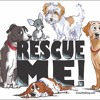 2ST's Animal Rescue