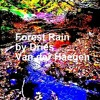 Forest Rain, Improvised Ambient Soundscape by Dries VDH- In progress