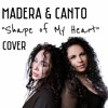 Shape Of My Heart (Cover)