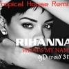Whats My Name - Rihanna (DjDitroid'313 2016☆Remix☆)